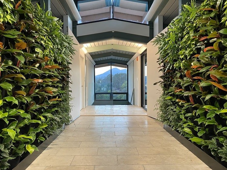 living wall in the foyer of a luxury home